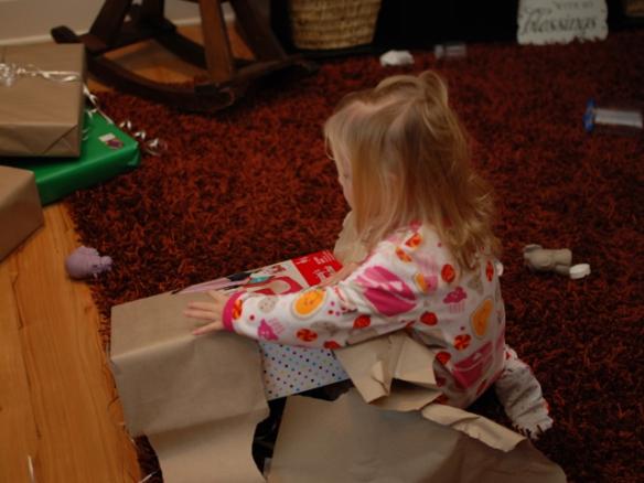 Christmas 2012 Pic 1_04