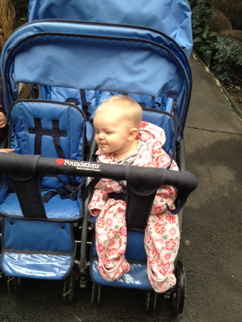 Lola Stroller