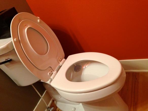 Toilet Seat 1