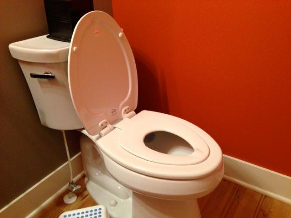 Toilet Seat 3
