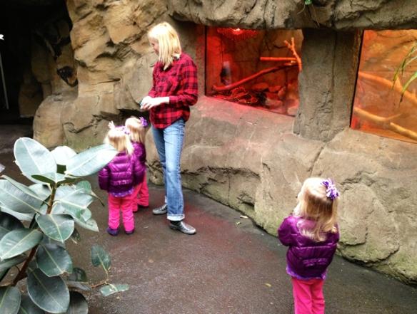 Zoos & Brews 04